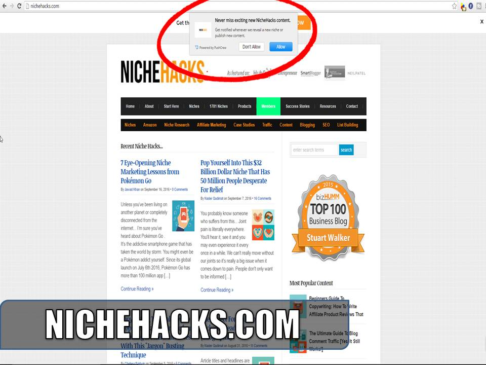 nichehacks.com using push notifications