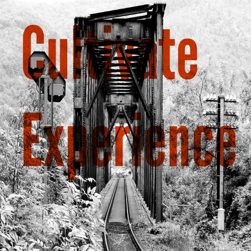 cultivate-experience
